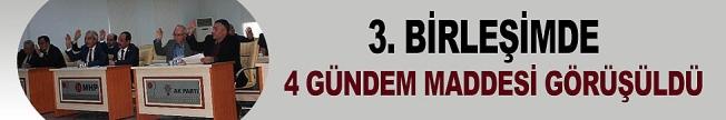 İL GENEL MECLİSİ OCAK AYI 3'ÜNCÜ BİRLEŞİMİ YAPILDI