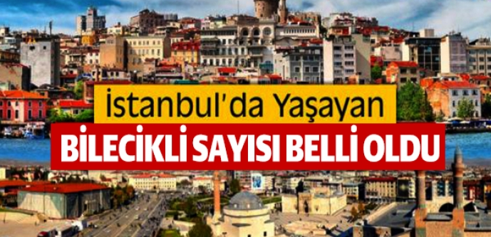 İSTANBUL'DA NE KADAR BİLECİKLİ YAŞIYOR?