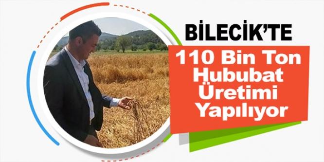 BİLECİK'TE 110 BİN TON HUBUBAT ÜRETİMİ YAPILIYOR