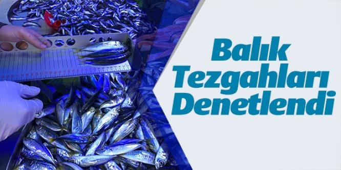 BALIK TEZGAHLARI DENETLENDİ