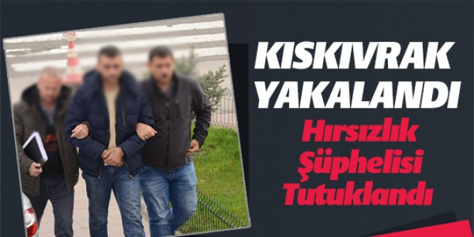 HIRSIZLIK ŞÜPHELİSİ TUTUKLANDI