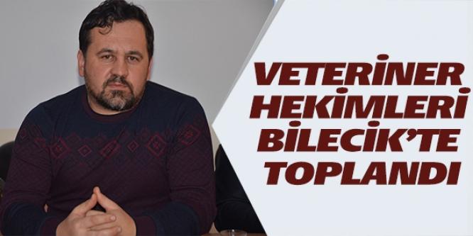 VETERİNER HEKİMLERİ BİLECİK'TE TOPLANDI