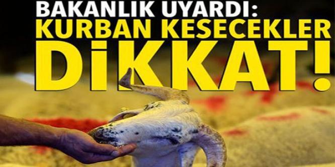 KURBAN KESECEKLER DİKKAT !