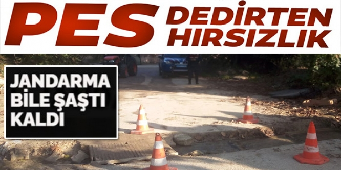 PES DEDİRTEN HIRSIZLIK !