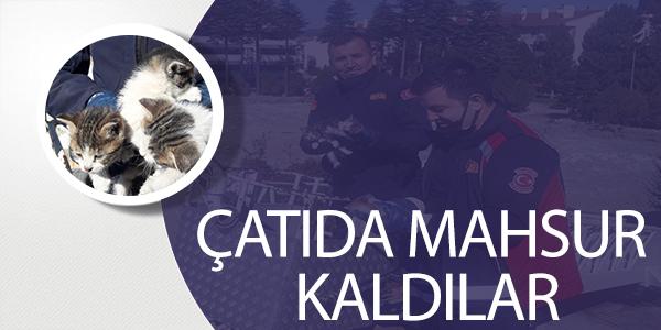 ÇATIDA MAHSUR KALDILAR