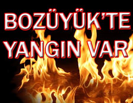 BOZÜYÜK'TE YANGIN