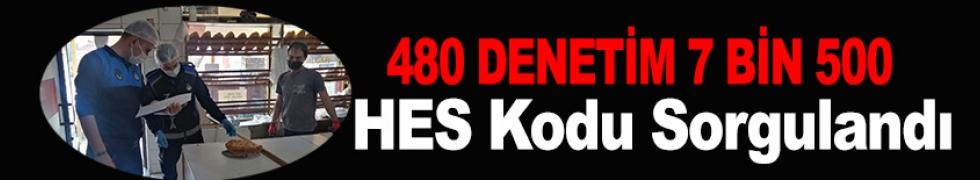 480 DENETİM, 7 BİN 500 HES KODU SORGULANDI
