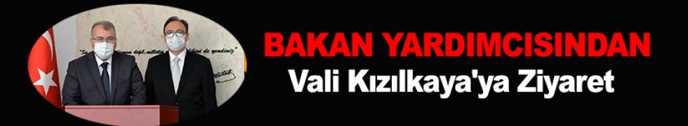 BAKAN YARDIMCISI ELDEMİR'DEN, VALİ KIZILKAYA'YA ZİYARET