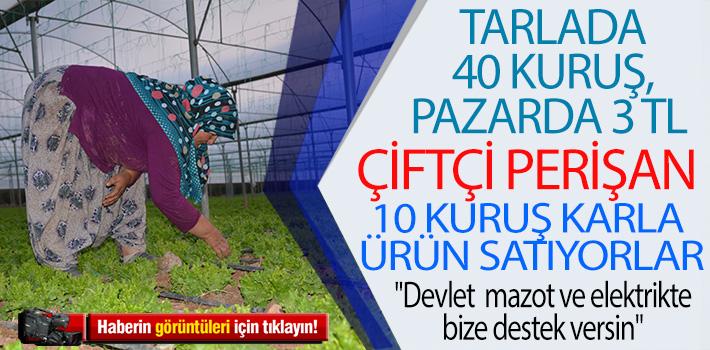 TARLADA 40 KURUŞ, PAZARDA 3 TL