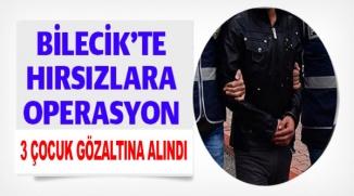 BİLECİK'TE HIRSIZLARA OPERASYON