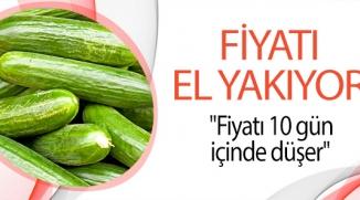SALATALIK FİYATLARI EL YAKIYOR