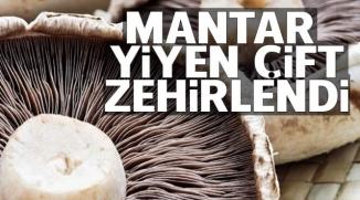 MANTAR YİYEN ÇİFT ZEHİRLENDİ
