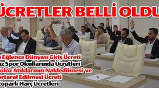 BİLECİK BELEDİYE MECLİSİ HAZİRAN AYI 2'İNCİ BİRLEŞİMİ  YAPILDI
