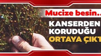 BU BESİN KANSERDEN KORUYOR!