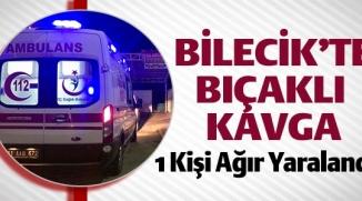 BİLECİK'TE BIÇAKLI KAVGA