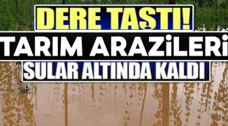DERE TAŞTI TARIM ARAZİLERİ SULAR ALTINDA KALDI