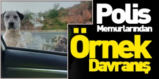 10 NİSAN POLİS GÜNÜ'NDE POLİSLERDEN ÖRNEK DAVRANIŞ