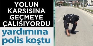 KARAYOLUNU GEÇMEYE ÇALIŞAN KAPLUMBAĞAYA POLİS YARDIM ETTİ