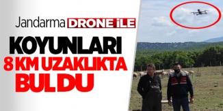 KAYBOLAN KOYUNLAR DRONE İLE BULUNDU