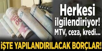 YAPILANDIRMA MÜJDESİ, KAPSAMA GİREN BORÇLAR...