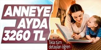 ANNEYE AYDA 3260 TL