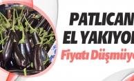 PATLICAN EL YAKIYOR
