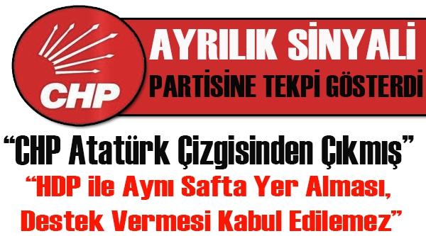 CHP'Lİ MECLİS ÜYESİNDEN PARTİSİNE TEPKİ